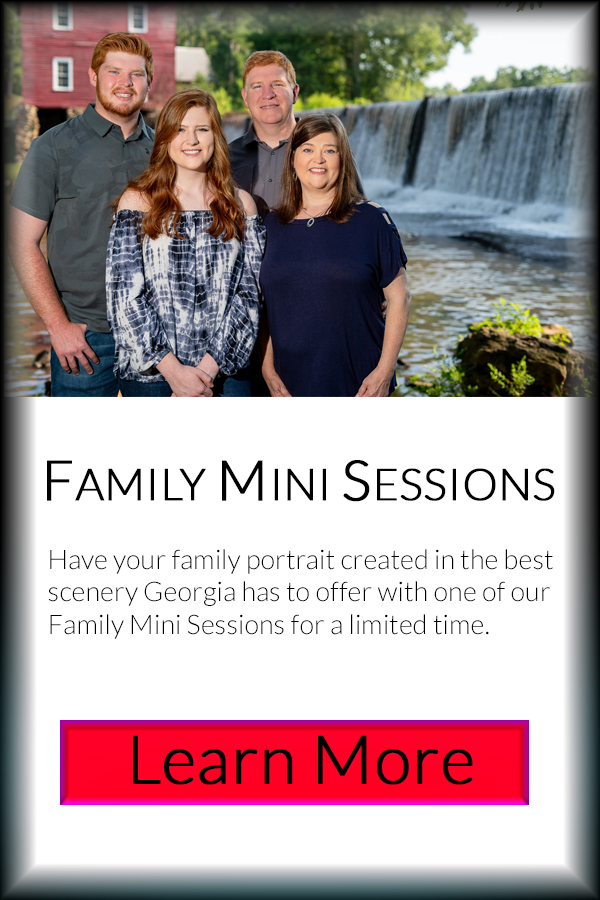 This image has an empty alt attribute; its file name is FamilyMiniSes.jpg